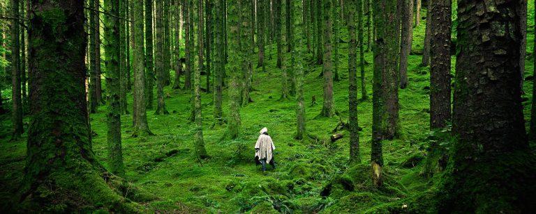 Figure walking in green forest